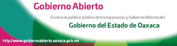 Oaxaca transparente