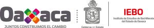 Instituto De Estudios De Bachillerato Del Estado De Oaxaca