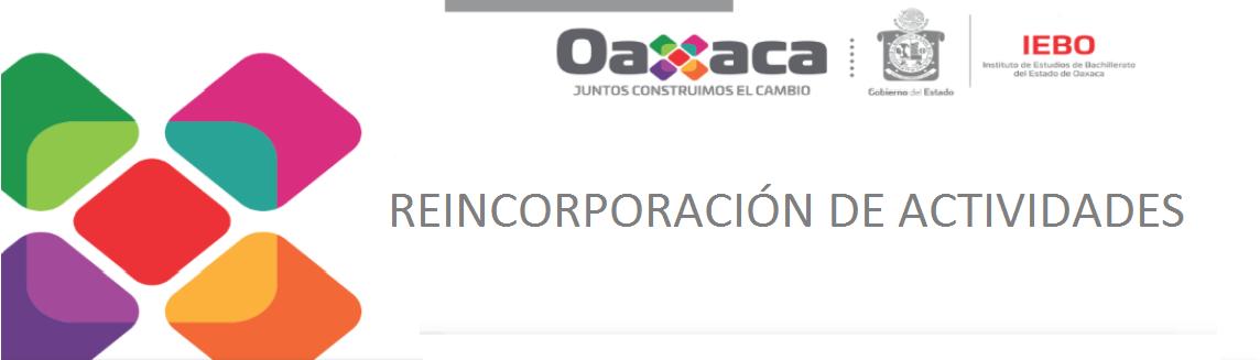 REINCORPORACIÓN DE ACTIVIDADES