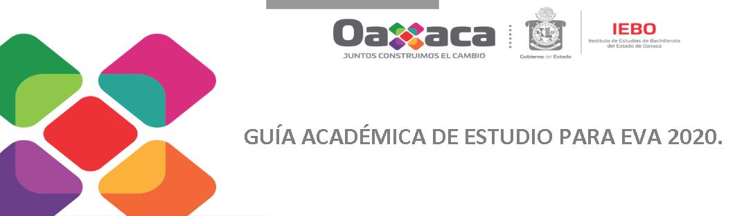 GUÍA ACADÉMICA DE ESTUDIO PARA EVA 2020.