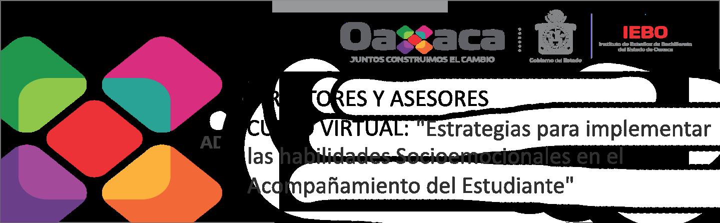 """Curso virtual: """"Estrategias para implementar las Habilidades Socioemocionales"""""""